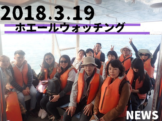 okinawa-whale-watching-blow-peduncle-arch-fluke-up-down-pec-slap-flipper-flopping-spy-hop-tail-peduncle-breach.2018031905.JPG